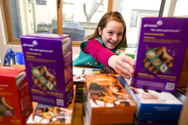Does Facebook make selling Girl Scout cookies too easy?