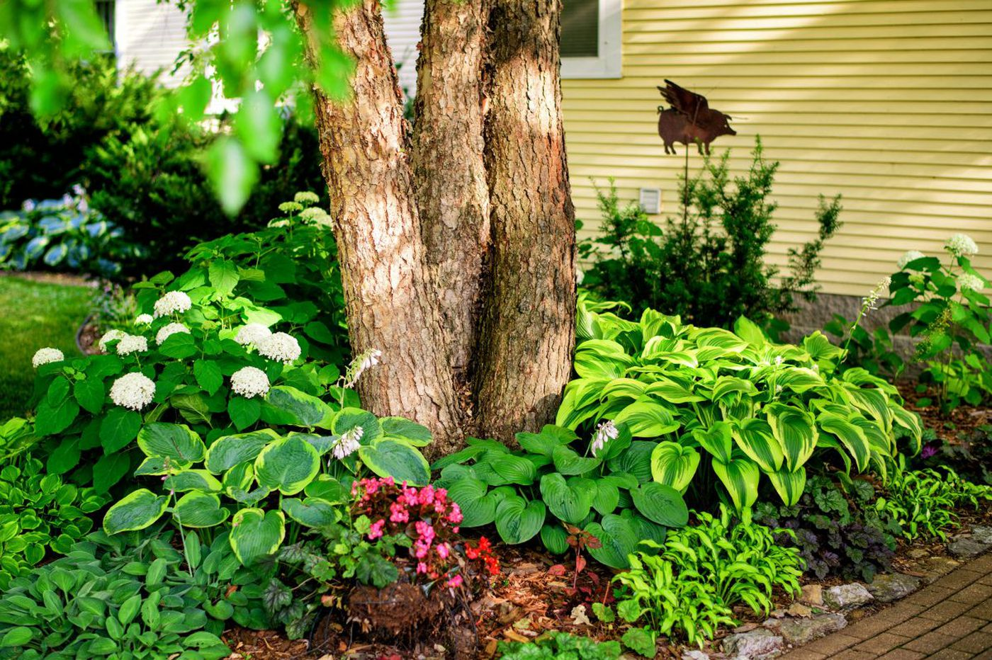 Sept. 15-21: In the garden, it's time to…