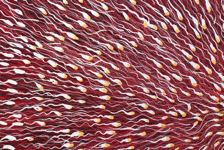 Sperm quality and quantity tends to decline with age. (Dreamstime/TNS)