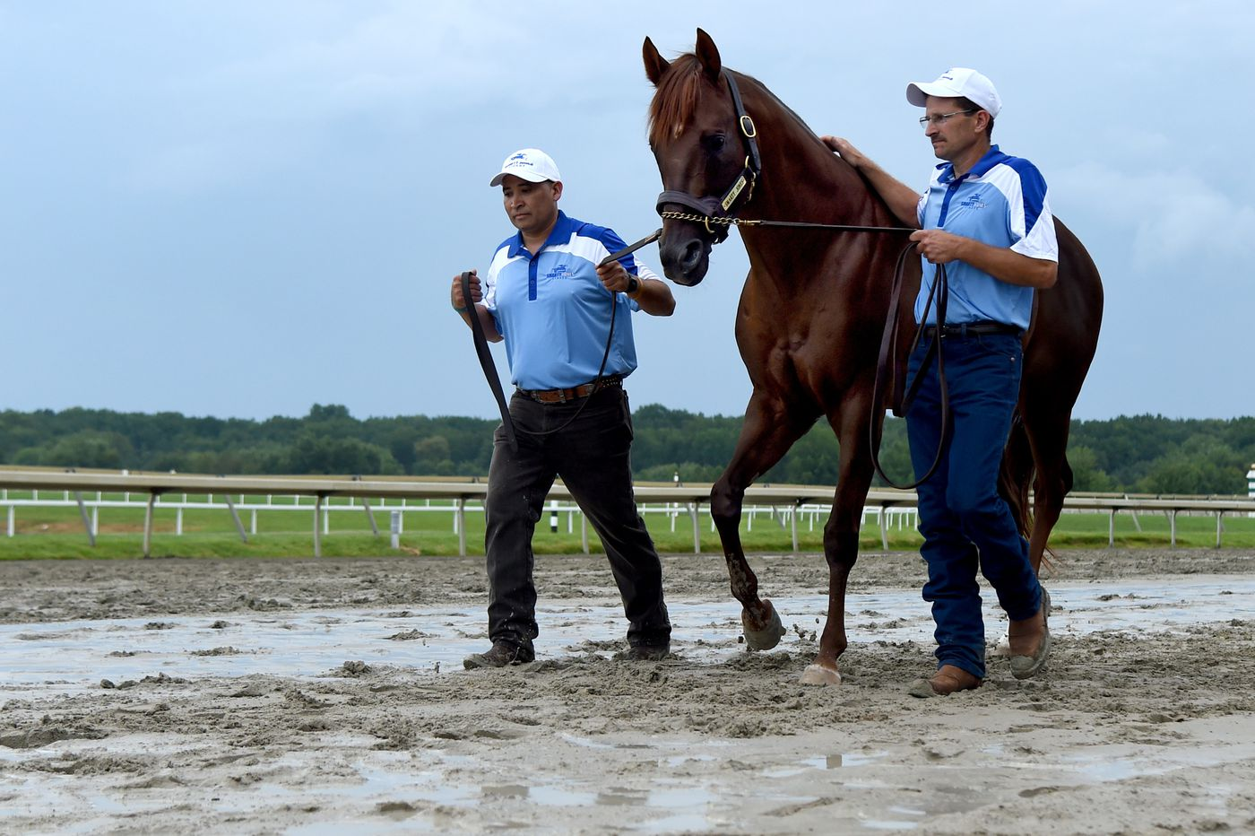 A perfect return at Parx for Smarty Jones