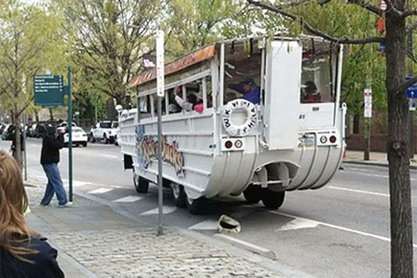 Tourists welcome return of duck boats