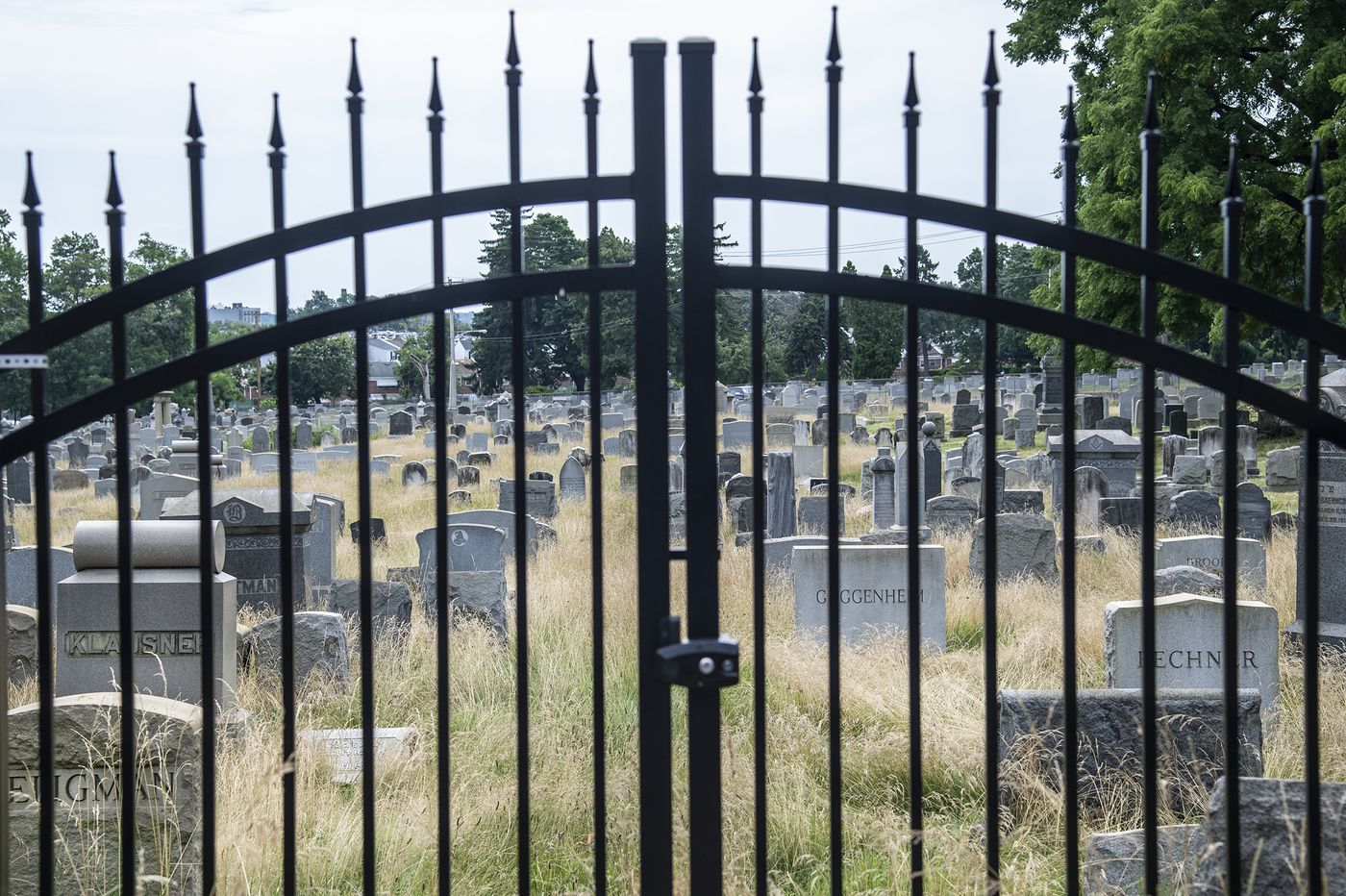 Locked gates and 4-foot-tall grass: Conditions at 2 Philly cemeteries leave families in anguish