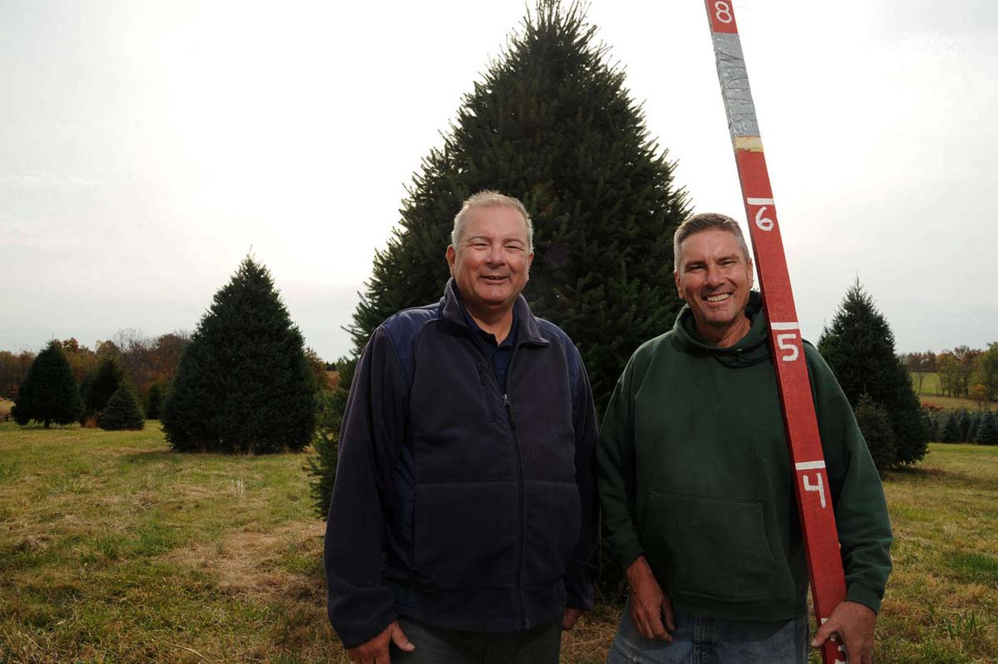 White House tree to come from Pennsylvania