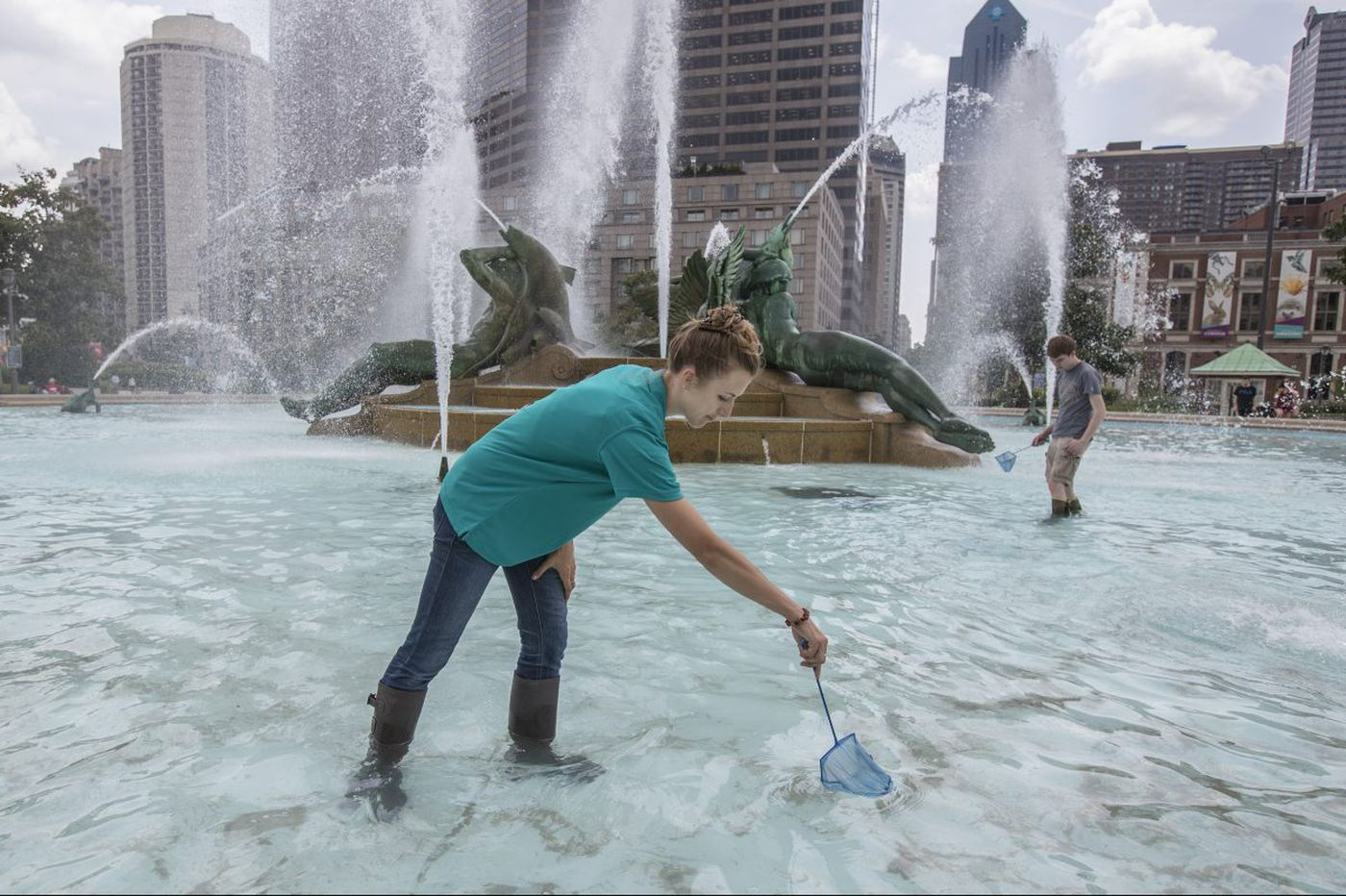 A scientist is using the bugs in Swann Fountain to study Philadelphia's climate
