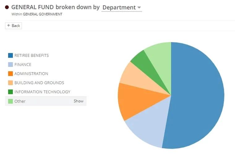 Screenshot of Radnor Township's interactive online budget tool.