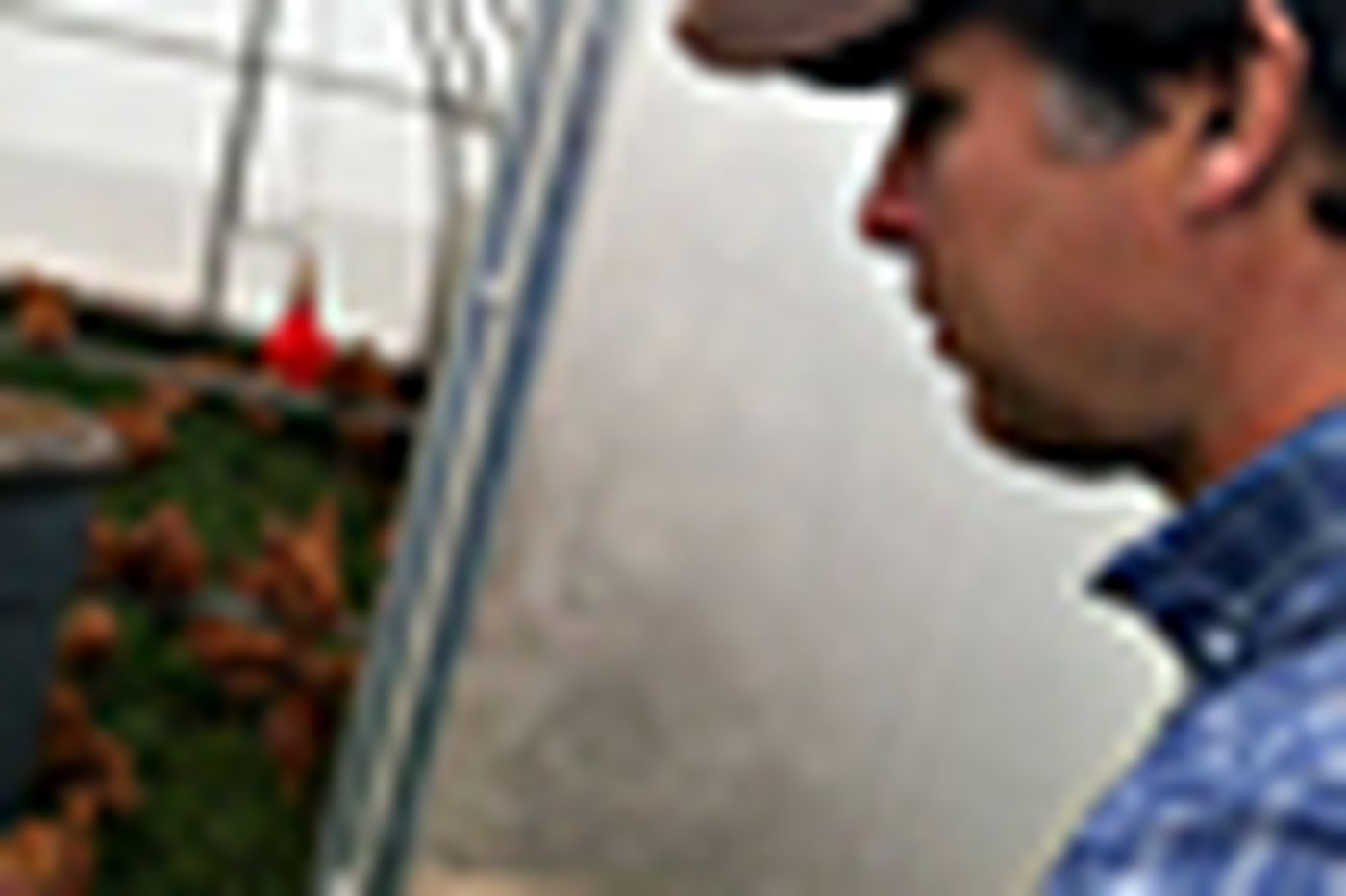 PhillyDeals: Ex-trader sees sustainable farming as good investment