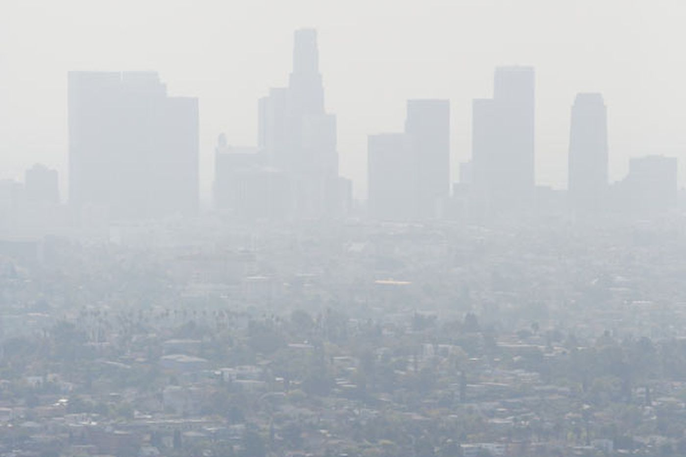 GreenSpace: If we clean up the air, kids' lungs will benefit