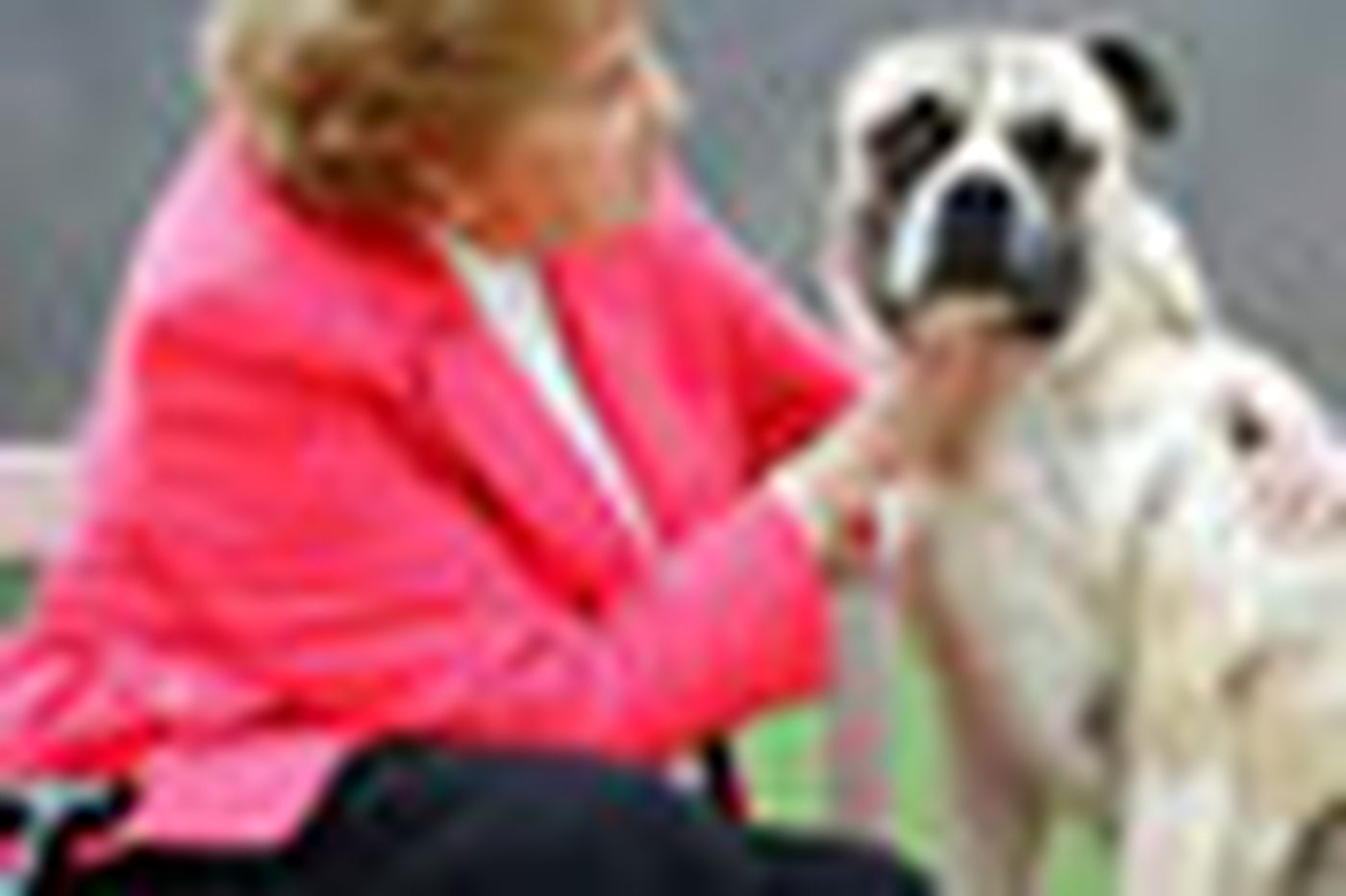 At 76, she has a nose for troubled kennels