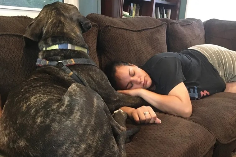 Sherlin Larsen, 31, resting at her home in Crofton, Md., with Arya, the 12-month-old mastiff who is being trained to alert and help her with the panic attacks that worsened after a horrific car accident 10 years ago in rural Pennsylvania.