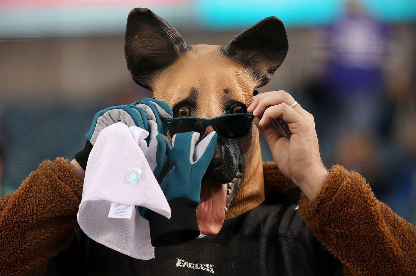 Super Bowl point spread: Eagles an underdog against Patriots