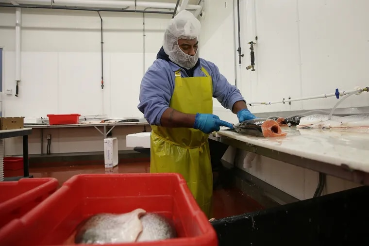 Tony Fontanez works with a salmon in the cutting room at Samuels and Son Seafood in Philadelphia, PA on March 30, 2020.