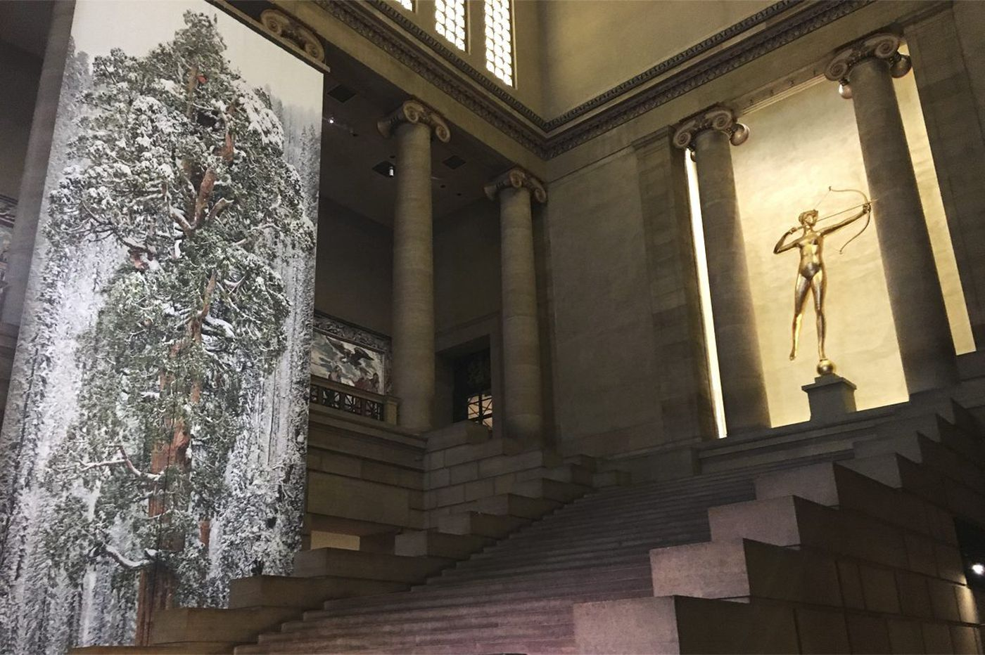 Philadelphia Museum of Art hangs massive tree banners to mark new wildlife photography exhibit