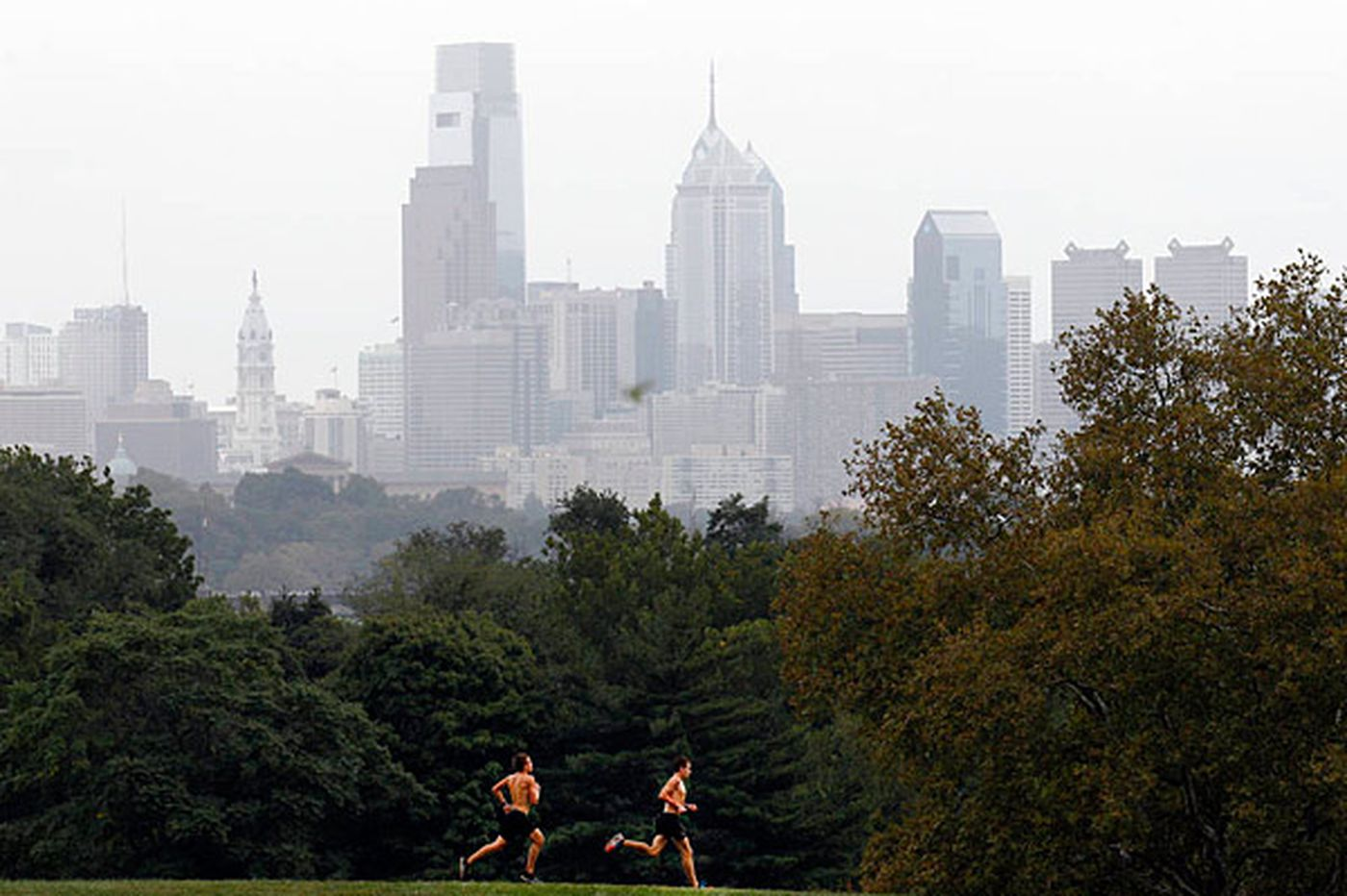 Changing Skyline: Fairmount Park plan is welcome, but it falls short