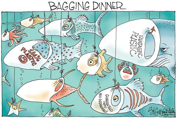 Political Cartoon: Bagging Plastic Bags