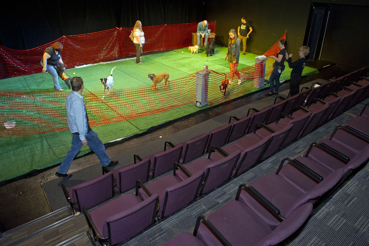 InterAct invites dogs to explore the theater as part of its June-a-Palooza festival
