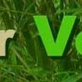 by V for Vegan