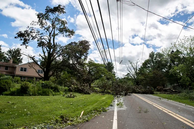 Downed trees and power lines on W. Sandy Ridge Rd. in Doylestown. Isaias impacted the Philadelphia area Tuesday, bringing heavy rain and strong winds.