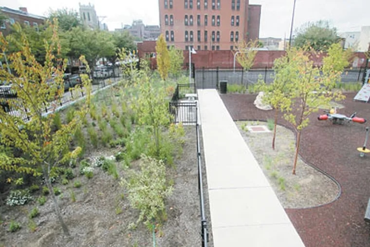 Overview of the rain garden at the park at 2nd and Reed. ( David Swanson / Staff Photographer )