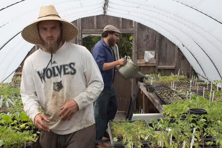 Dusty Hinz (left) and Nathan Kleinman of the Experimental Farm Network, both veterans of the Occupy movement, at work in Elmer, N.J.