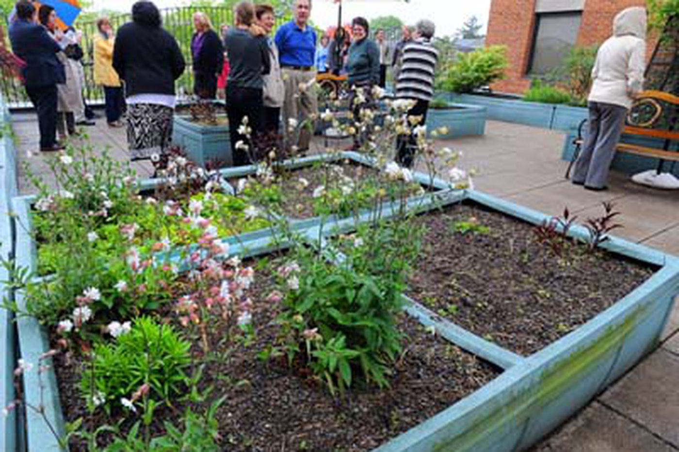 Rooftop aerie opens atop Norristown Human Services Center