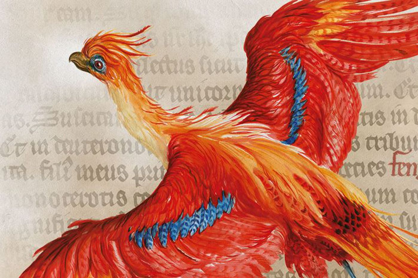 Broadway Beat: 'Harry Potter' play now has a major history exhibit, too