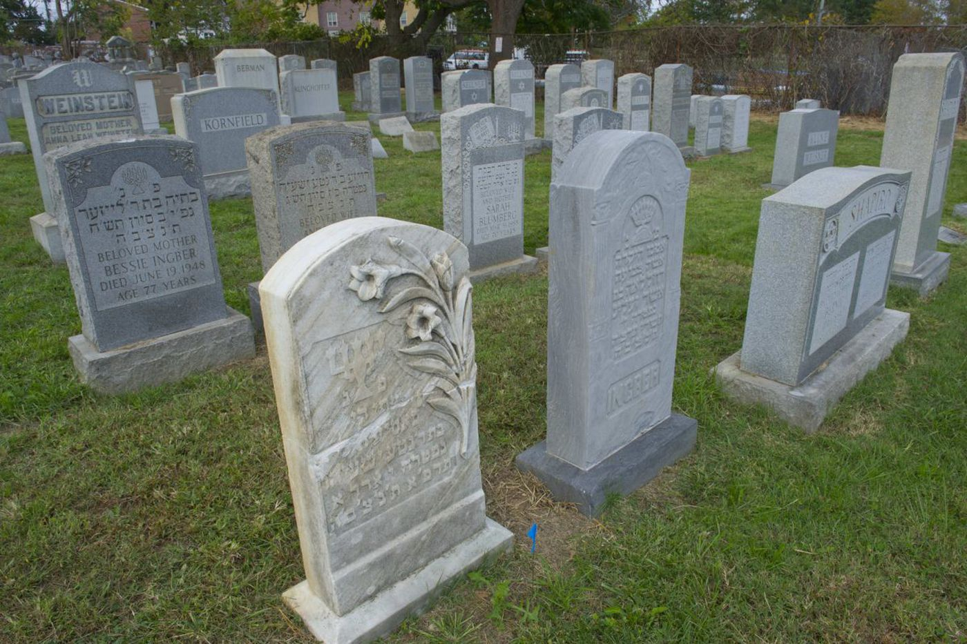 Vandalized Jewish cemetery in Philly restored after donors give $300K