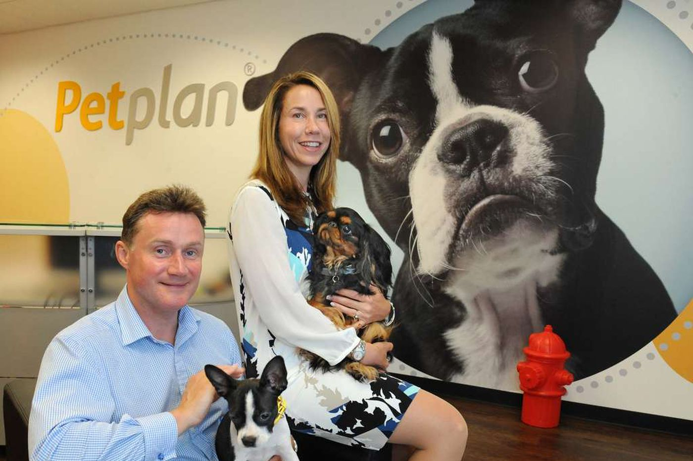 Petplan's married founders say they were fired after she got pregnant again; Investors say sales dragged