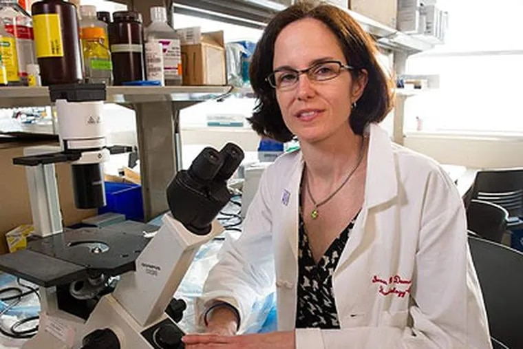 Susan Domchek, an associate professor of hematology/oncology at Penn's Perelman School of Medicine, said the new center's priorities will include research into the biology of the genes, development of vaccination strategies, and discovery of better detection methods.