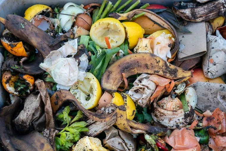 Foods scraps collected from Philadelphia residents that will be turned into compost.