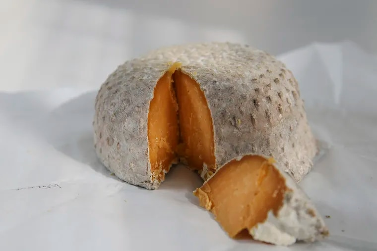 Cheese of the Month: Martha Street from the Merion Park Cheese Co. in Merion Station is a raw cow's milk cheese made in a tomme style that's washed in beer.