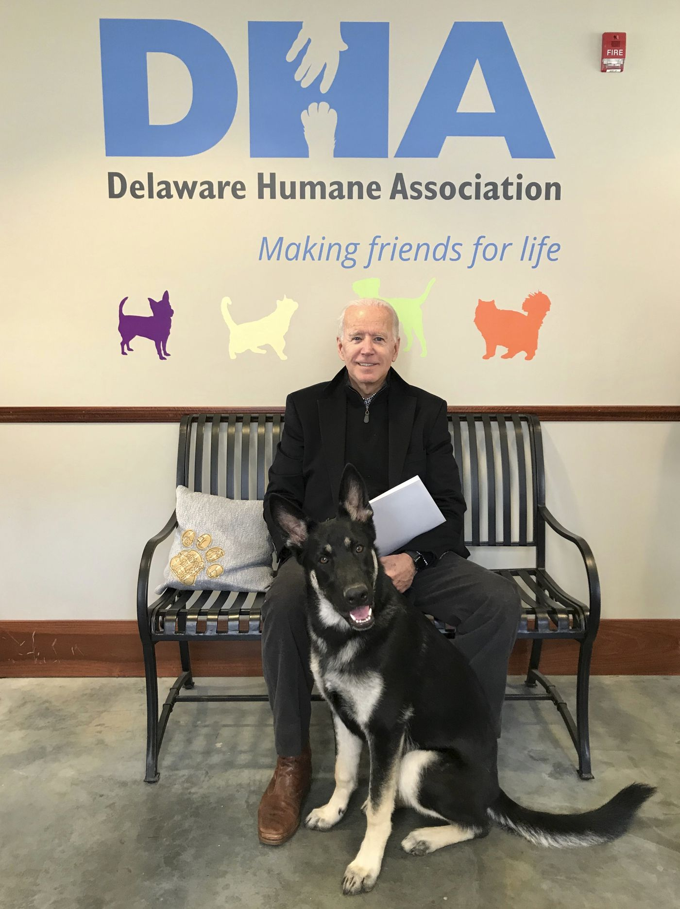 Former Vice President Joe Biden adopts new dog