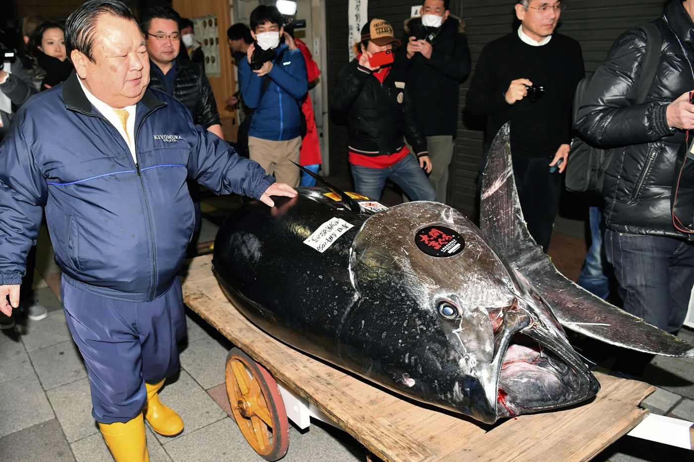 Giant tuna fetches record $3.1 million at Japan auction