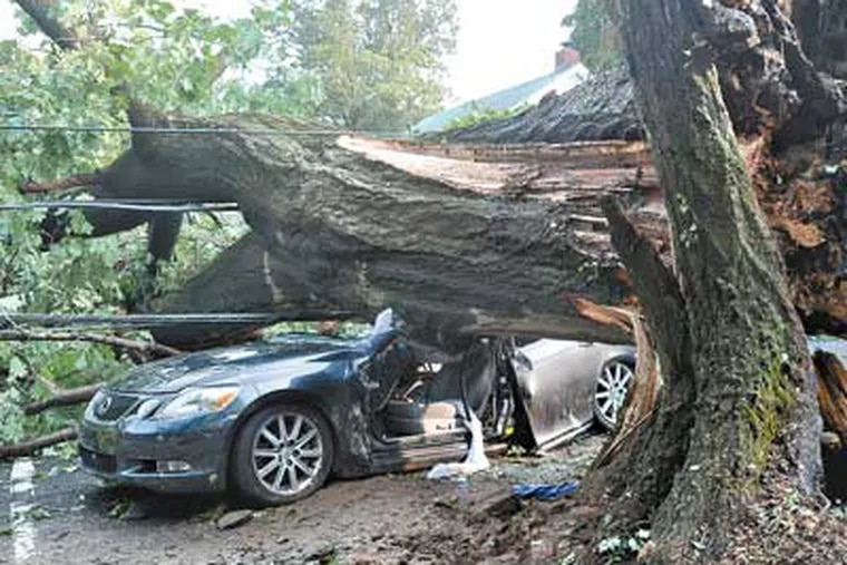 An oak tree fell on a car carrying a mother and two daughters on West Greenwood Avenue in Lansdowne. Two occupants had to be freed. (SHARON GEKOSKI-KIMMEL / Staff Photographer)