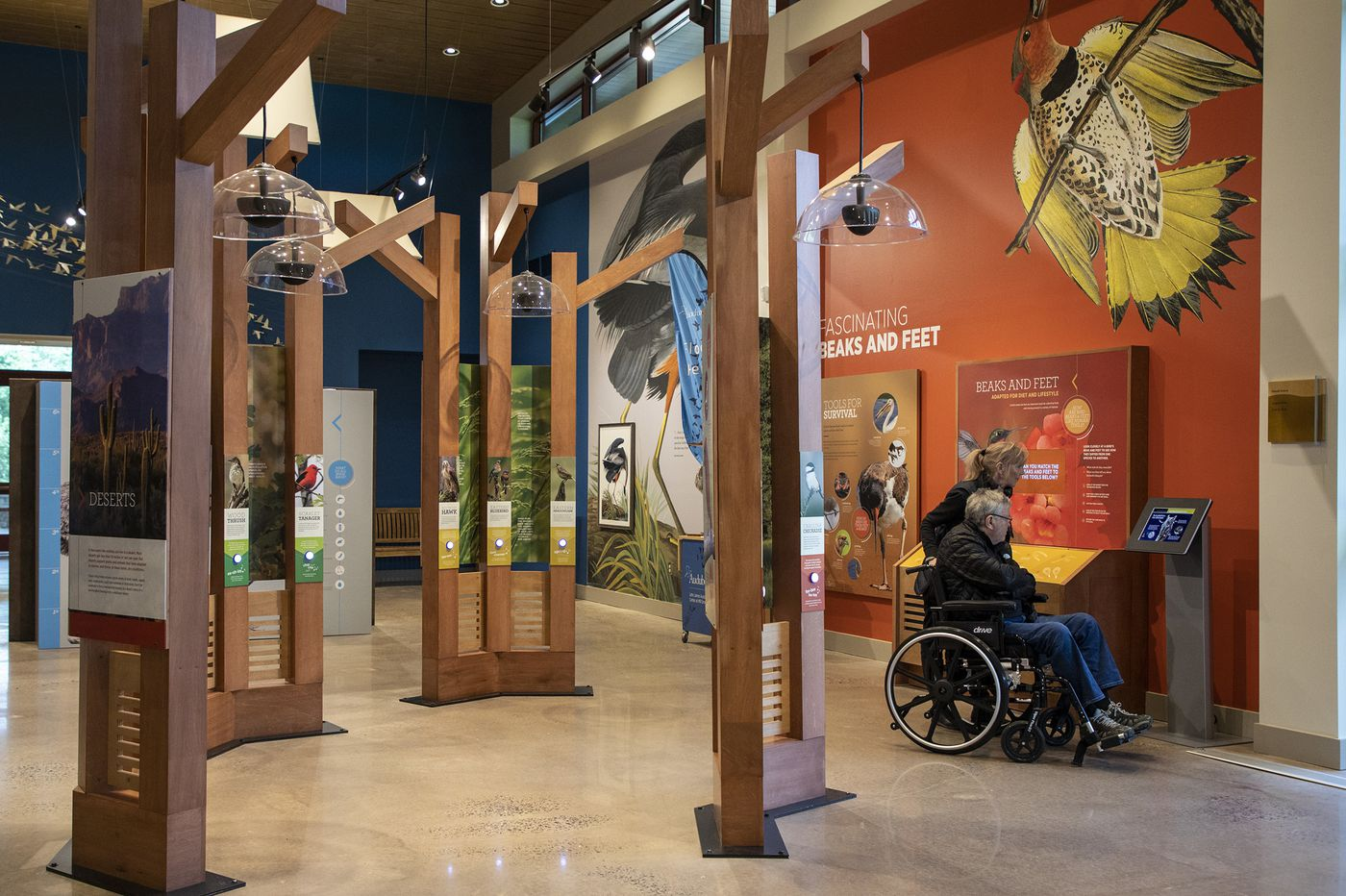 New Audubon Center resembles a bird in flight and aims to be a bigger regional attraction
