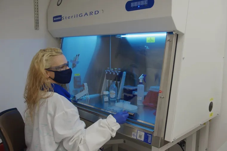 In a University of Pennsylvania lab, Sharon Adamski extracts plasma from blood collection tubes to study how well the vaccines work against COVID-19.