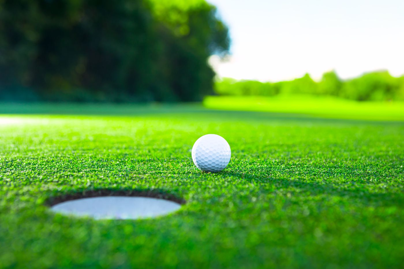 Bala's Scott McNeil leads Patterson Cup by one shot
