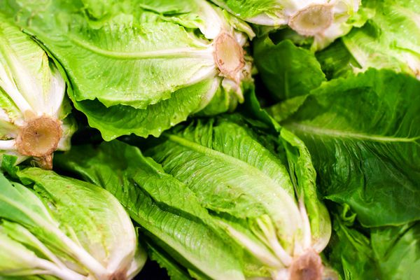 Romaine lettuce is not safe to eat, CDC warns U.S. consumers