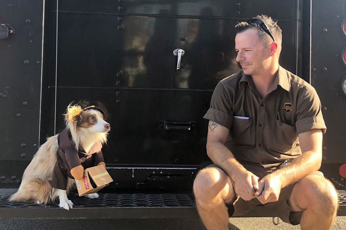 Forget dog vs. mailman. These dogs have nothing but puppy love for delivery people.