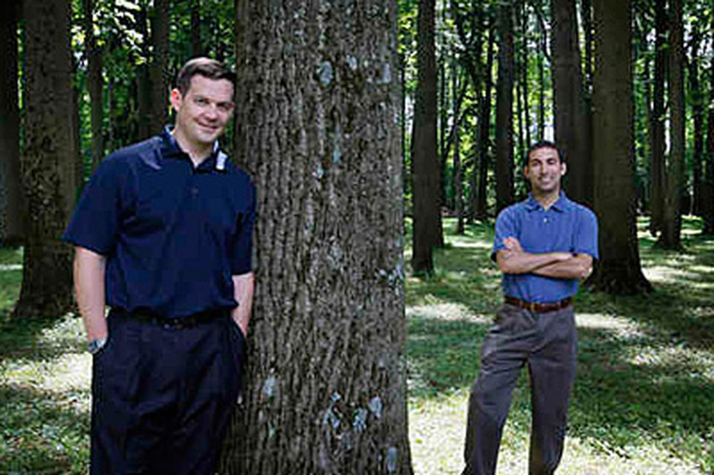 Turning trees' carbon into silver