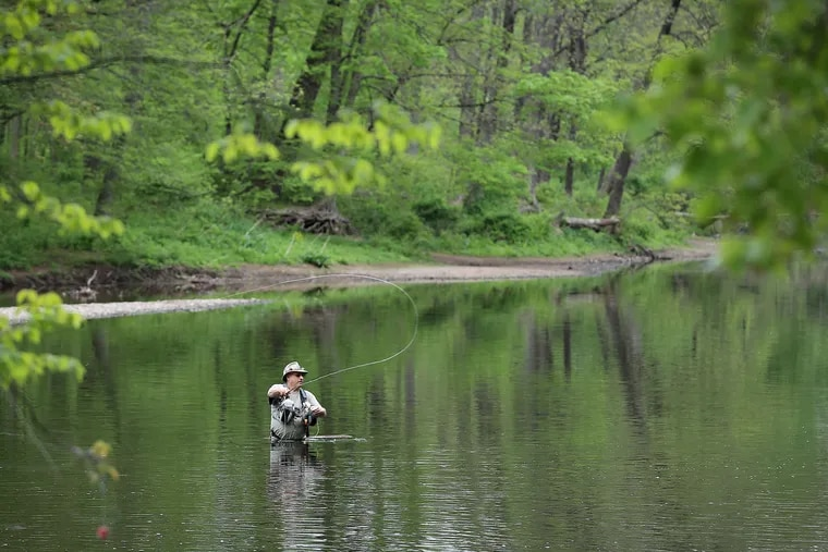Peter Fuhr, 58, of Bensalem, fly fishes in Neshaminy Creek in Tyler State Park in Newtown, Pa. on May 3, 2021.