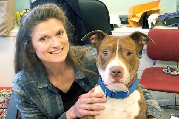 Philly's new animal shelter leader was fired from her last job   Stu Bykofsky