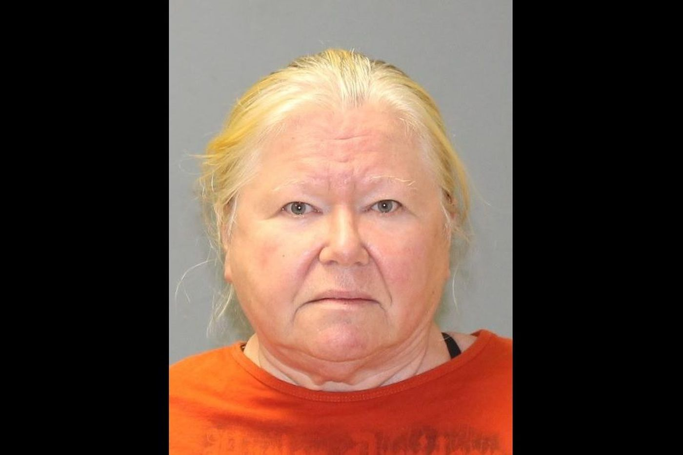 Burlco woman charged after 44 dead dogs found on her property
