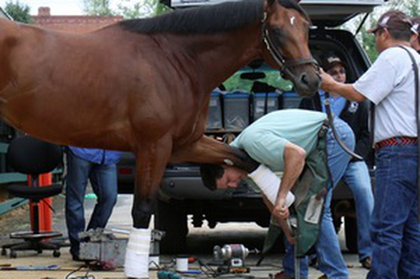 Racing's credibility riding on injury-free Preakness