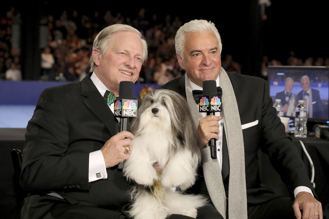 Philly's National Dog Show will go on this year, but doggone it, it's closed to spectators