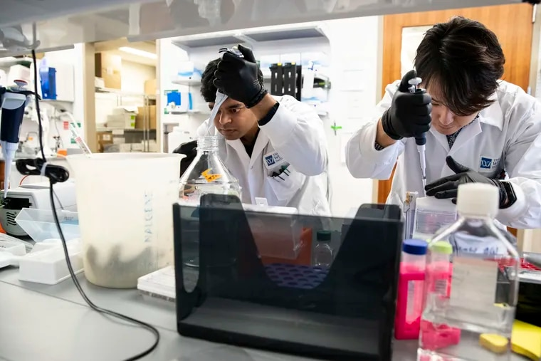 At the Wistar Instistute in January, project manager Faraz Zaidi, left, and Penn graduate student Daniel Park analyzed a coronavirus vaccine that is now being tested on humans