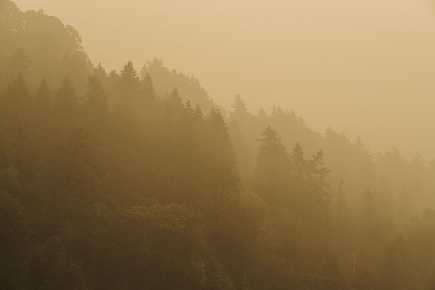 Smoke from Western wildfires is nearing Europe and might be on an around-the-world journey