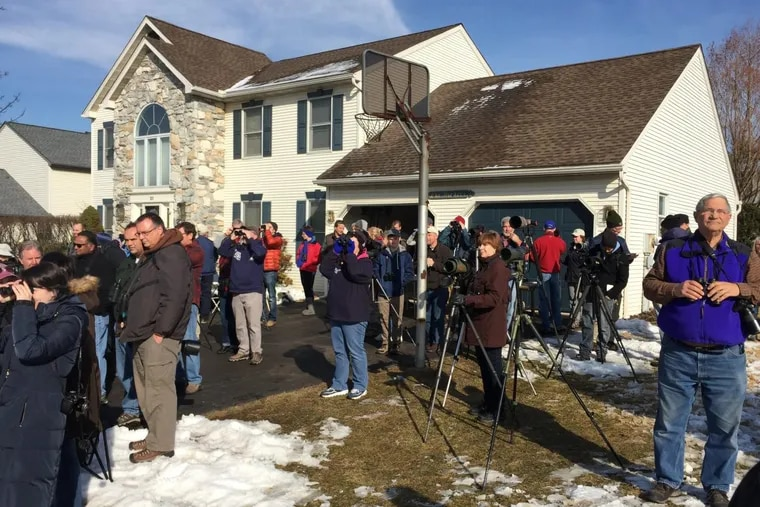 Crowds gathered at Tom Binder's house for weeks in Berks County to get a glimpse of BB, the black-backed oriole native to Mexico.