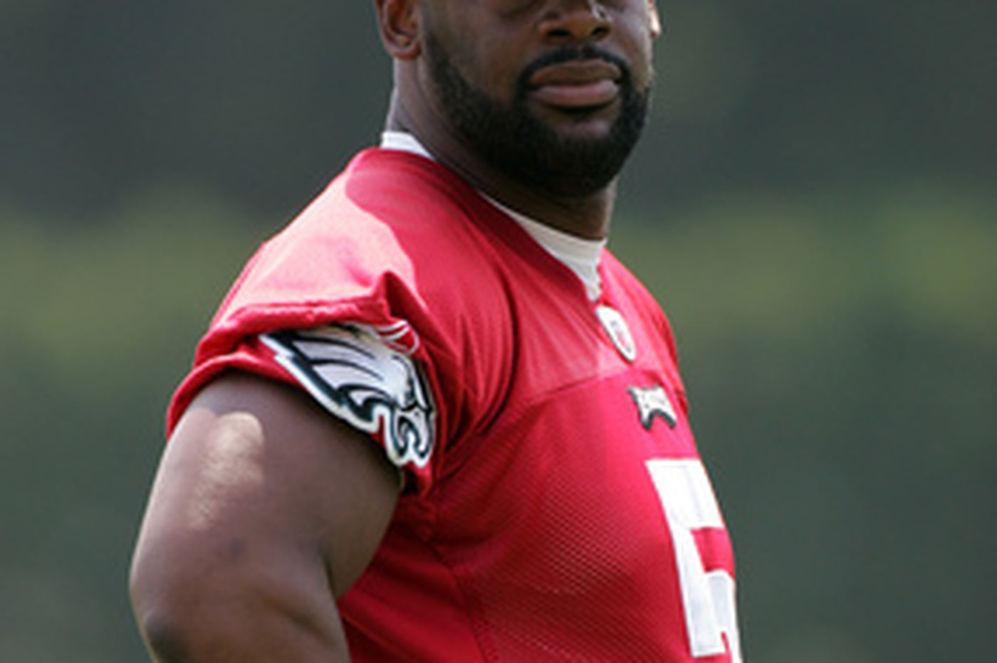 McNabb sidelined by tendinitis