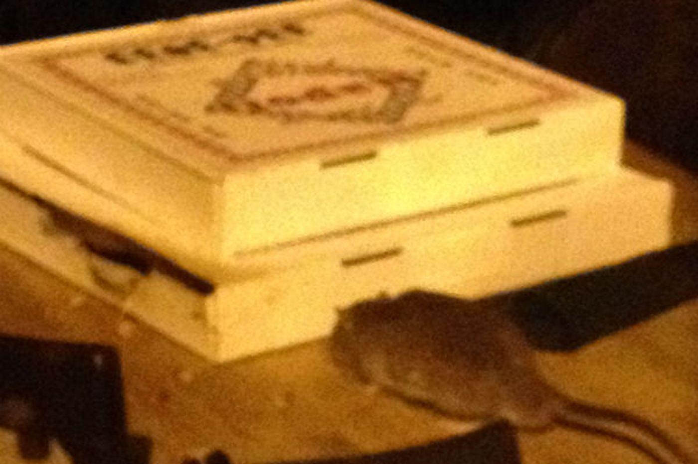 Rats! Vermin get social at Center City cafe