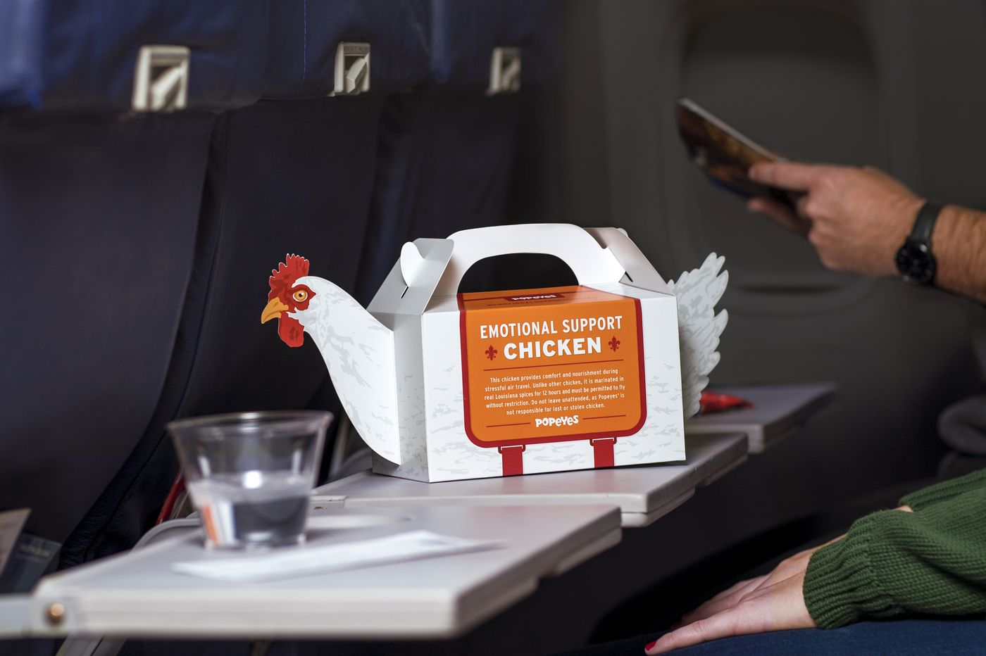 Attention, frequent fryers: Emotional support chickens take wing at PHL